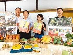 大崎藝術芒果 盈餘回饋兒童教育
