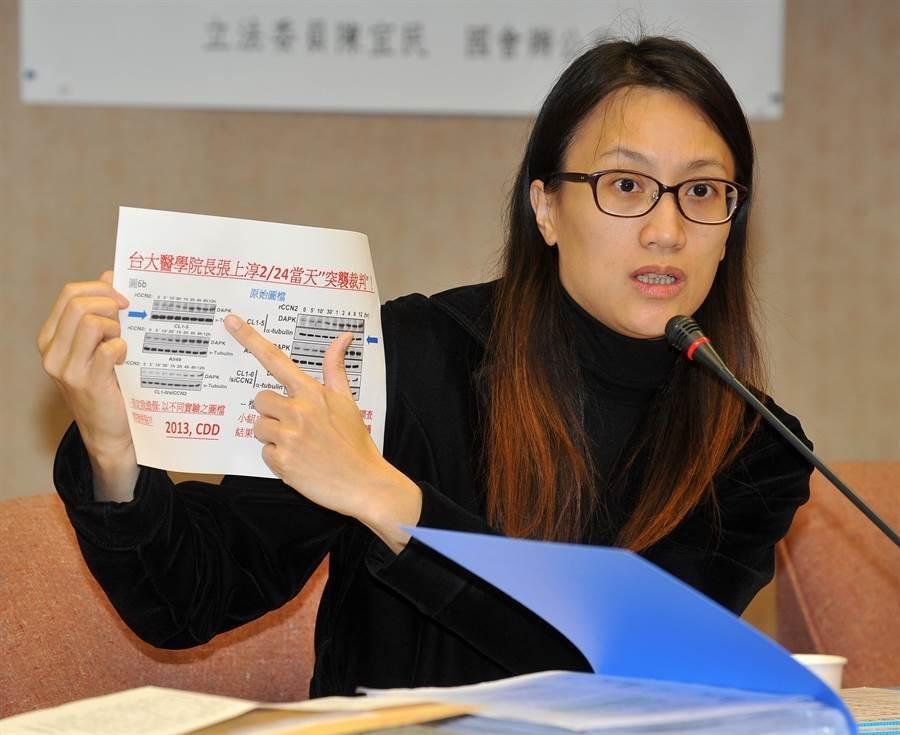 前台大美女教授張正琪(本報系資料照)
