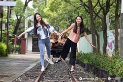 嘉義市拚暑假觀光經濟 嘉義製材廠成網美拍照新夯點