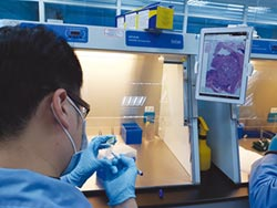 以AI部署精準醫學 行動基因優化檢測體系