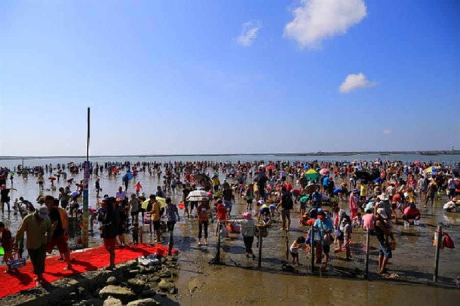 七股海鮮節-觀光赤嘴園摸文蛤。(圖取自台南旅遊網)