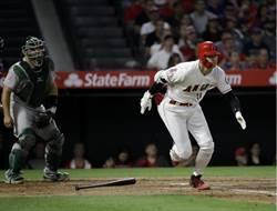 MLB》大谷一刀流發威 打擊率冠天使