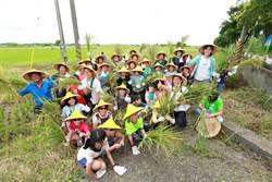 田間玩很大轉型 暑期8梯次農遊體驗開跑