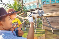 飯店兒童夏令營 探索體驗快樂學習
