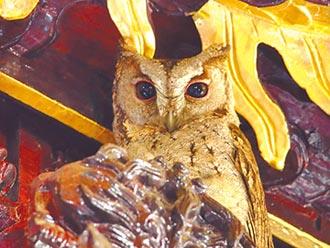 領角鴞長駐紫龍宮8年 民眾爭睹