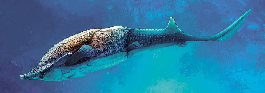 古海洋中暢游的麒麟魚模擬圖。(新華社資料照片)