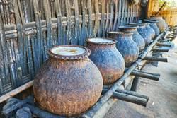 挖到5千年前酵母 專家飲古埃及酒驚呼