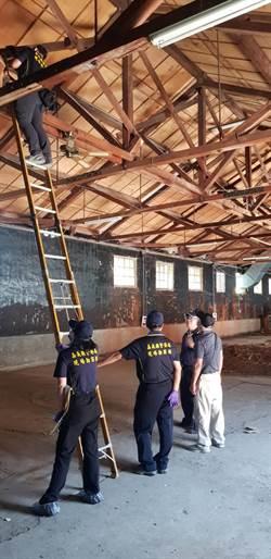 不顧安危 糖廠珍貴紅檜屋樑遭竊警逮4賊