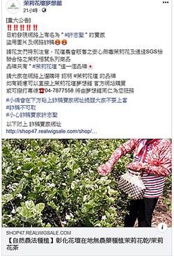 臉書詐騙猖獗 茉莉花鄉也受害