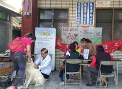 台中市7月狂犬疫苗及晶片巡迴注射開跑