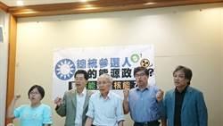 要綠能或核能 環團要藍營總統參選人表態