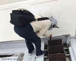 4天3例!台南登革熱爆群聚感染