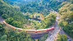 阿里山林鐵 暑假列車遊祕境