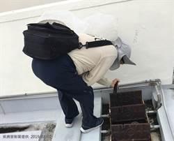 台南本土登革熱 證實群聚感染