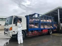 非洲豬瘟防疫  8月起運輸車輛未裝GPS將開罰