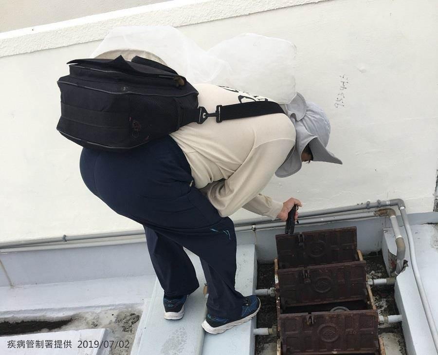 台南爆發登革熱群聚感染。(疾管署提供)
