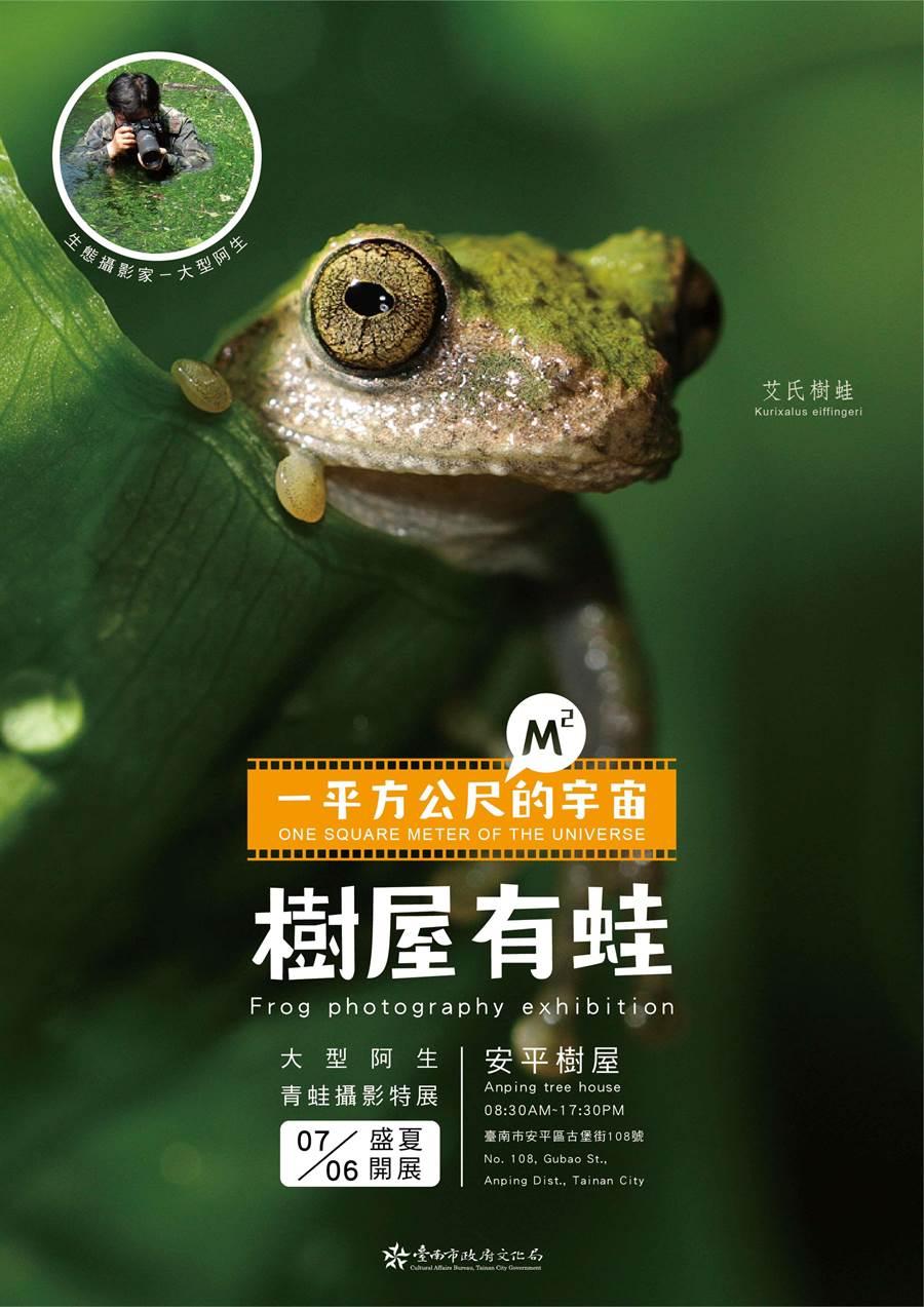 「一平方公尺的宇宙.樹屋有蛙-大型阿生青蛙攝影展」,7月6日起將在安平樹屋開展。(曹婷婷翻攝)