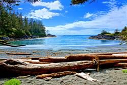 6.5強震侵襲加拿大溫哥華島西北部