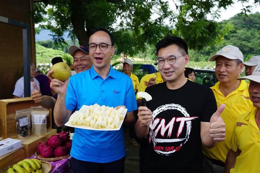 前新北市長朱立倫(左)、立委江啟臣(左)合體行銷台中東勢的高接梨。(王文吉攝)