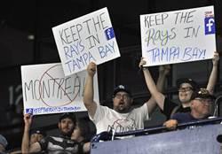 MLB》光芒腳踏兩條船 球迷憤怒!