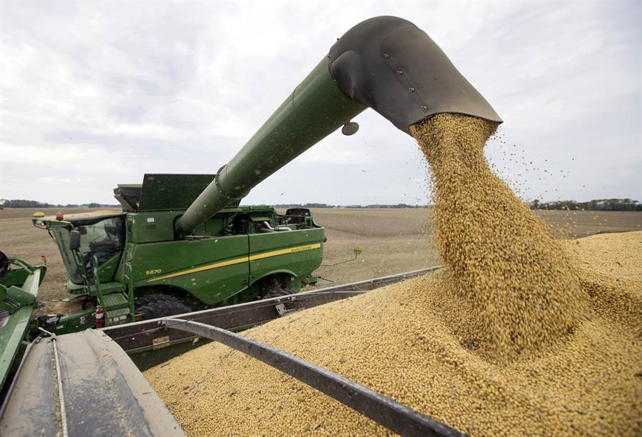 中國大陸官方色彩的「陶然筆記」微信公眾號稱,美中重啟協商後,美國農產品仍會成為談判內容,呼籲美方應從美國農民利益出發,彼此平等相互尊重。圖為美國豆農業。(美聯社)