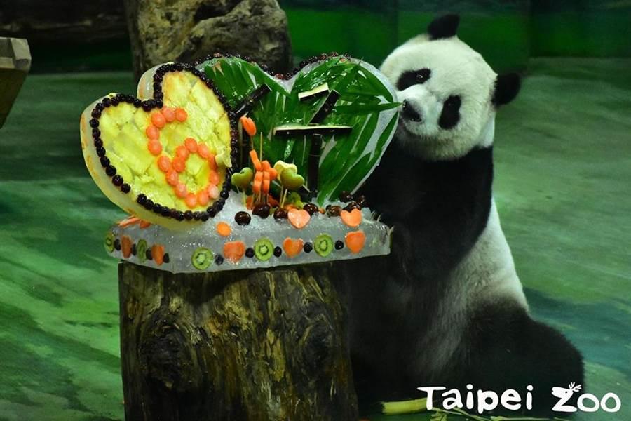 動物園今為圓仔舉辦6歲生日趴。(翻攝臺北市立動物園臉書)