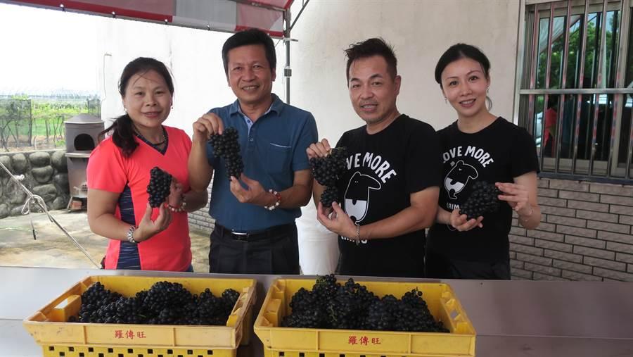 秉森酒莊負責人楊秉森(左)熱情響應玩味釀酒趣活動,台北城市科技大學餐旅系助理教授魏道駿(右二)夫妻也帶學生報名體驗。(謝瓊雲攝)