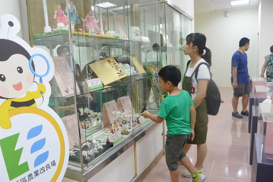 民眾欣賞做工精緻的蠶繭文化創意競賽作品。(巫靜婷攝)