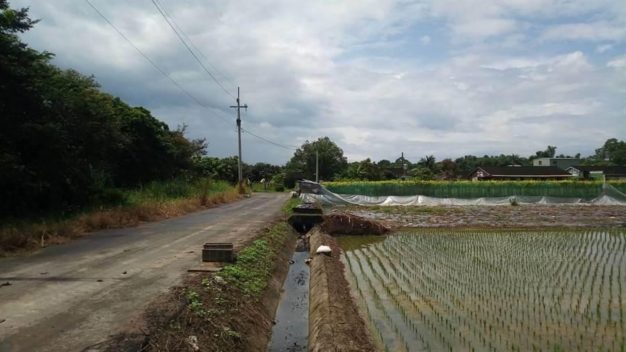 選址點之一的台糖白河崁頭農場與民家僅一路之隔,地方擔憂氣味及汙染,反對設廠。(台南市議員張世賢服務處提供)