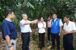 竹筍保價收購 農民盼擴大範圍及加量