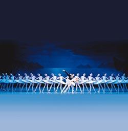 天鵝群舞 馬林斯基鎮團之寶