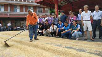 農委會允保證收購在來米餘糧 6500萬元獨厚彰化縣