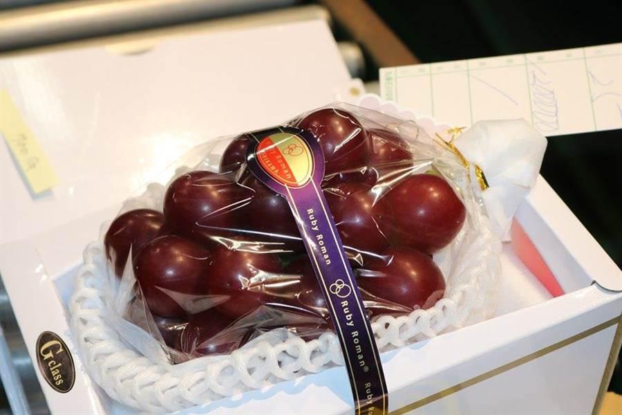 頂級葡萄品牌「浪漫紅寶石」(Ruby Roman)今在石川縣金澤中央市場舉行拍賣會,共有40串參與競標,創下G等級700公克最高價一串120萬日圓。(圖擷自浪漫紅寶石俱樂部)