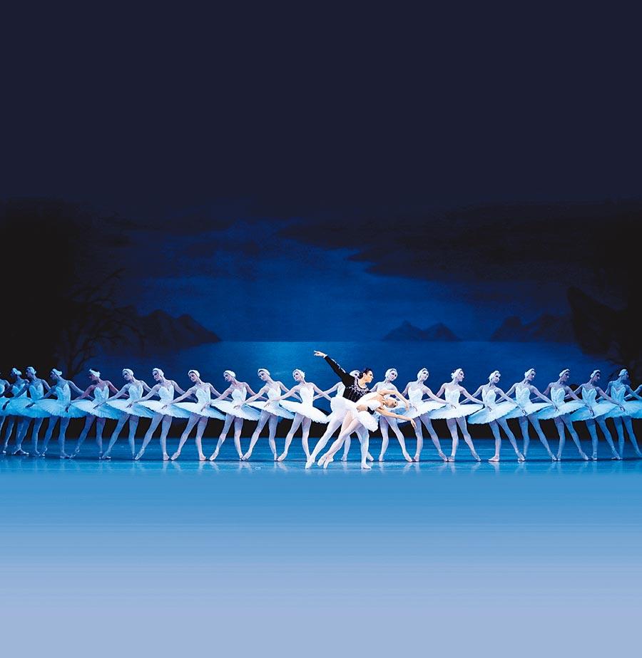 享譽全球的馬林斯基芭蕾舞團,下周即將來台演出《天鵝湖》,除了站在前面擔任主角的首席舞者們,在主角身旁扮演的天鵝群舞。(牛耳藝術提供)