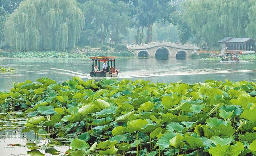 2017年6月,圓明園長春園景區開闢了水上觀荷路線。(新華社資料照片)