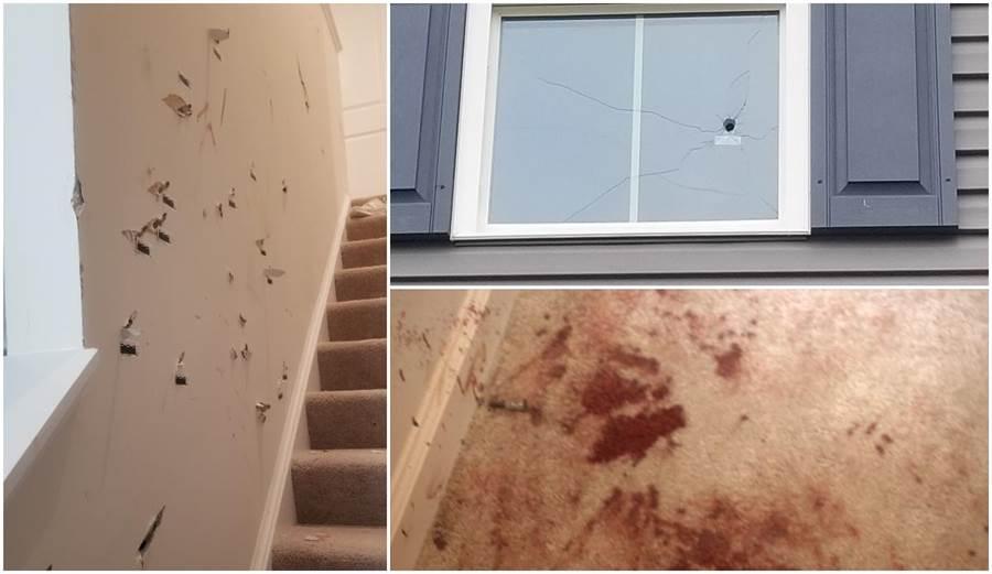 裸女闖民宅,男主人把房子轟成馬蜂窩都趕不走她。(照片來源:wric.com)