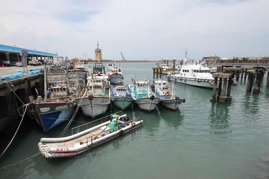 梧棲漁港去年捕獲52萬尾烏魚,創下20年來新高紀錄,帶來豐碩烏金。(陳淑娥攝)