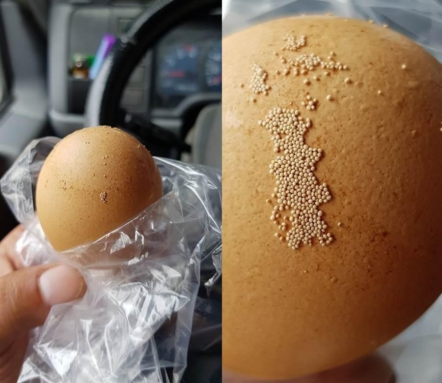 驚見蛋殼黏密集蟲卵?雞農曝真相(圖/網友陳政煜提供)