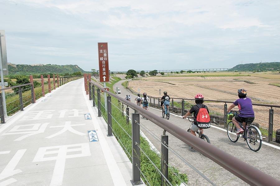 忘憂谷堤頂自行車道下周將啟用,壯闊的花海與瑰麗的夕陽將盡收眼底。(陳淑娥攝)