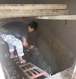 台南查獲登革熱孳生源 防疫人員:隨手一撈就50隻