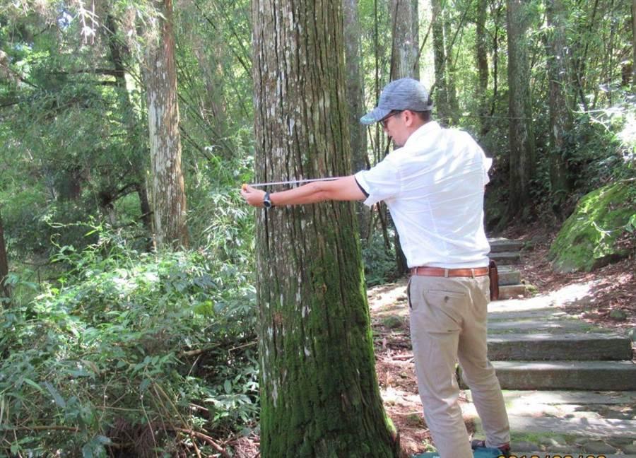 嘉義林管處辦巡護員體驗活動,巡山者模擬測量樹圍。(廖素慧翻攝)