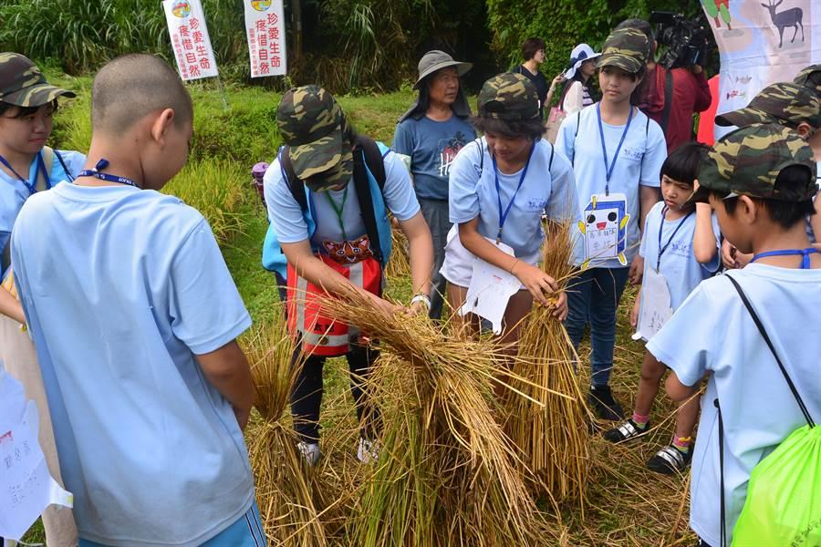 夏令營學員體驗做稻草人。(巫靜婷攝)