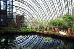 和可愛動物當「網美」!「熱帶雨林館」光影灑落好夢幻