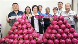 二林火龍果甜吻吻上市 13日辦盛大農特產展售