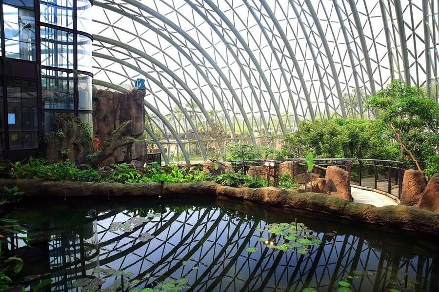 一進入「穿山甲館」就可感覺到整體空間開闊、植栽錯落有致的氛圍(紫晶數位有限公司攝)
