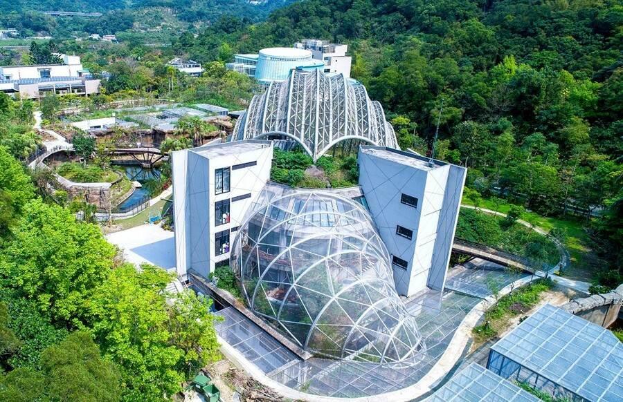 在「熱帶雨林室內館(穿山甲館)」的「尾部」,是另一個獨立的網籠,透過二樓室內賞鳥牆的設計概念((紫晶數位有限公司攝)