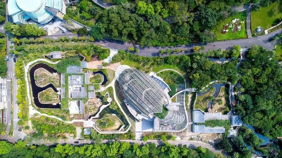 熱帶雨林室內館是以台灣穿山甲意象為造型,館舍的正面隔著主軸步道與大貓熊館相對,尾巴的部分則向後延伸至原本的亞洲熱帶雨林區(紫晶數位有限公司攝)