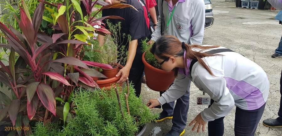 台南市中西區開山里12日持續孳清工作,仍發現有兩處陽性反應的積水容器,並給予開單。(程炳璋翻攝)