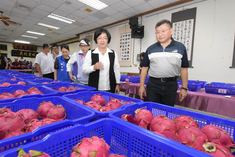 二林農會總幹事邱士平(右)與彰化縣長王惠美(右一)一同關心今年參與評鑑的紅龍果。(謝瓊雲攝)