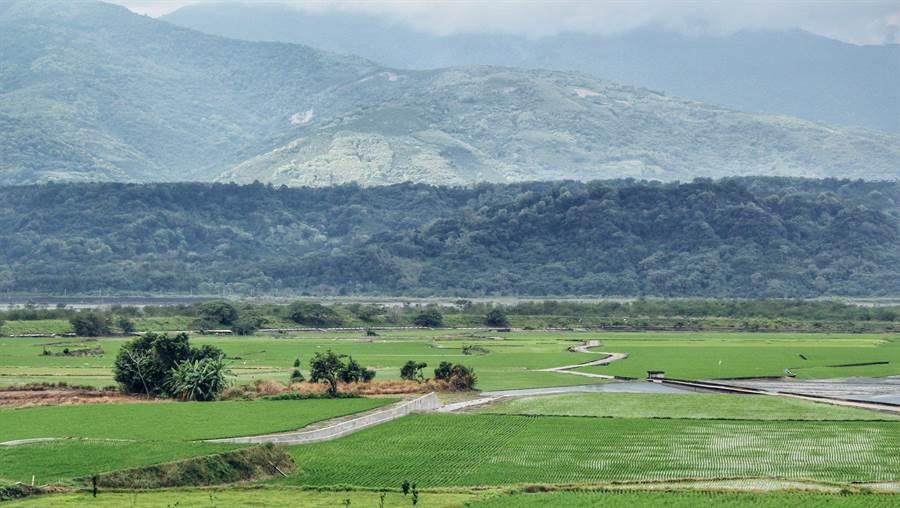 被稱為「玉里天堂路」的麻汝段外環道(96.5公里至97.2公里)水土保持局花蓮分局將於28日在天堂路舉辦「夏田」封路演唱會。(水土保持局花蓮分局提供)